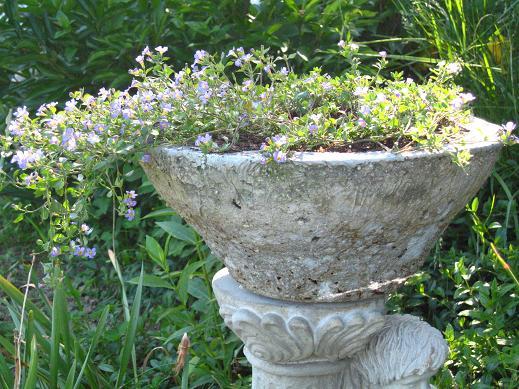 stone statue angel planter purple flowers